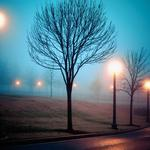 On the outskirts, fog, cities, streets, parks, street lights, cars, wallpapers