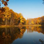 Nature, autumn, trees, lakes, reflecting, beautiful scenery, scenery wallpaper