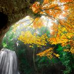 Nature, forest, water, waterfalls, autumn scenery wallpaper