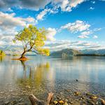 New Zealand, South Island, lake, trees, sky, white clouds, nature landscape wallpaper
