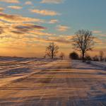 Frost, snow, winter, trees, cold, drifting snow, road