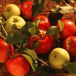 Apples, yellow, red