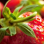 Strawberry, berry, leaves