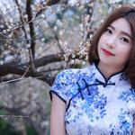 Cheongsam style short hair pure beauty plum blossom beautiful wallpaper
