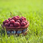 Cherry, basket, berries