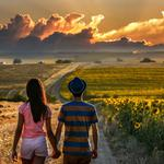 Fields, beautiful, theme, lovers, summer, positive, photo. positive