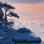 Winter, clouds, pines, mountains, crimea, snow