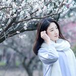 See plum blossoms pure and long-haired literary beauty wallpaper