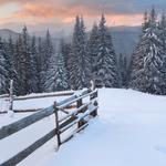 Mountains, snow, trees, trees, forest, fence, footprints, evening, winter