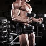 Gym, muscles, power, bodybuilder, legs, bisceps