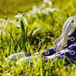 Sneakers grass flowers