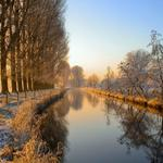Canal, trees, water, fence