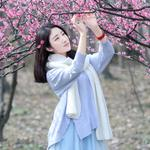 Plum blossom pure and beautiful girl wallpaper