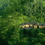 House, forest, green