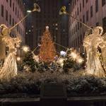 Christmas, frost, santa claus, hd quality, sweets, beautiful new year pictures, trees