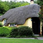 England, house, thatched roof, tree, thatch, landscape wallpaper