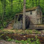 Tennessee, usa, norris dam state park, old mill