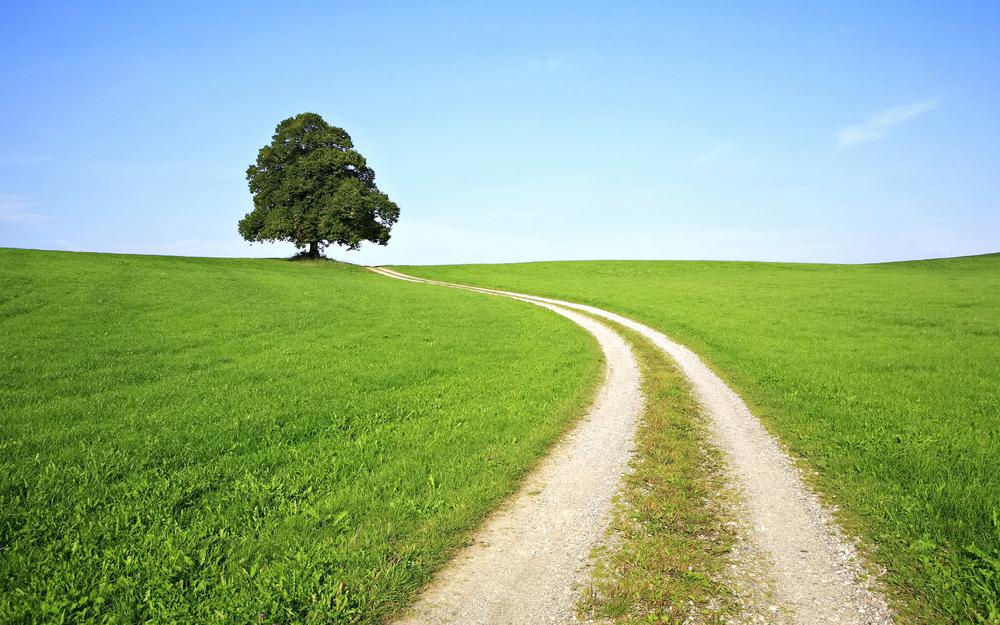 Grass, trees, road, hills, nature, scenery, sky