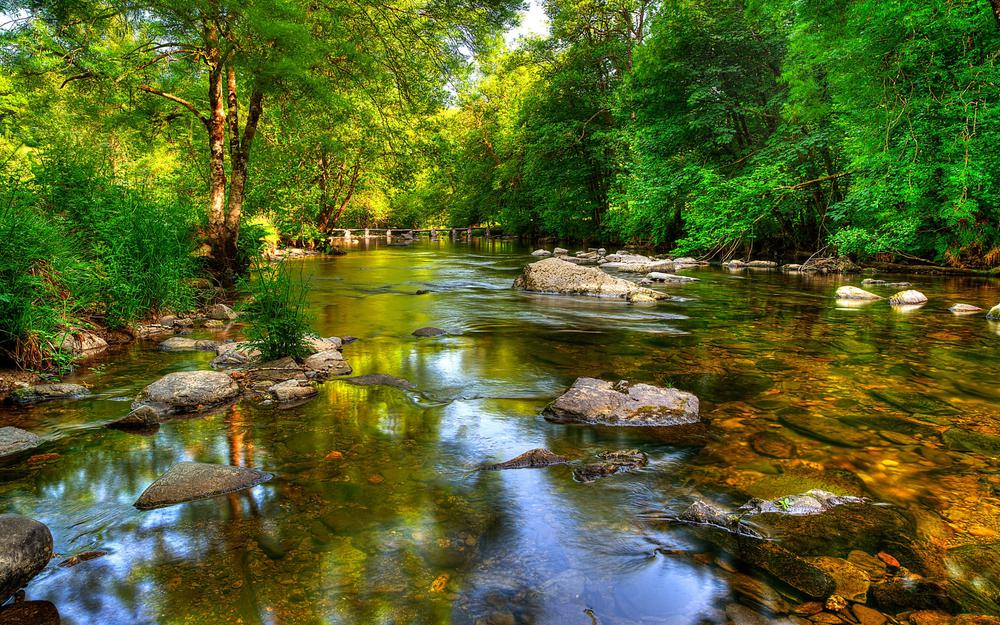 Exmoor, nature, forest, lake, river, rocks, trees, green landscape wallpaper