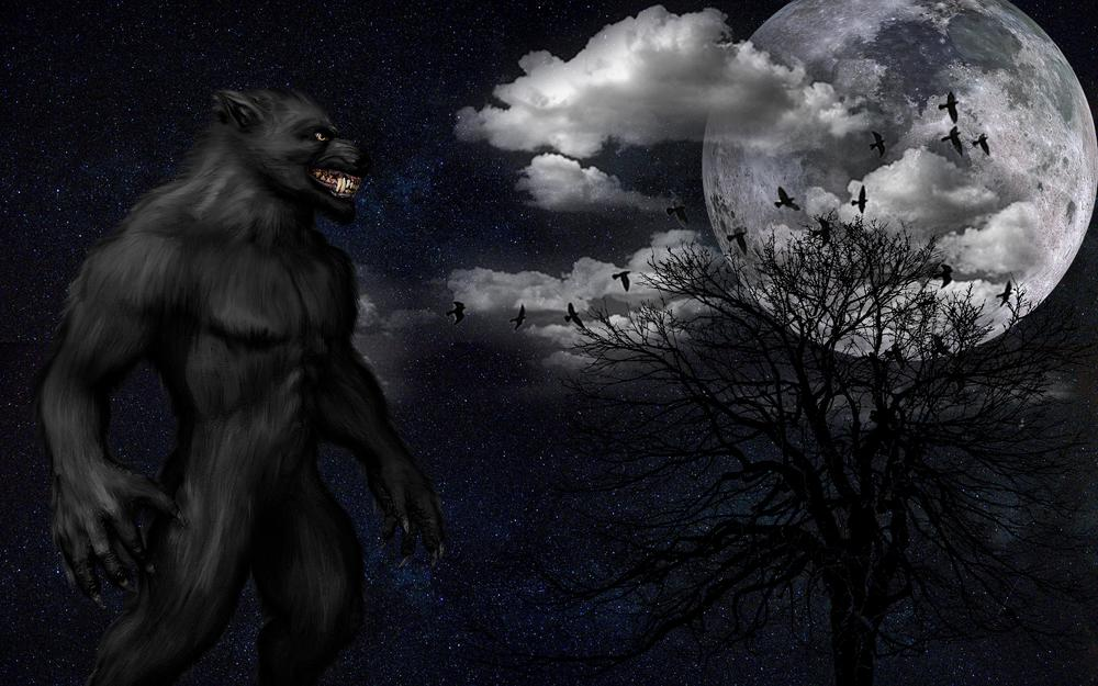 Werewolf, monster, grin, full moon, starry sky