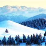 Winter, forest, mountains, snow