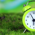 Green grass, clock, time, morning, landscape desktop wallpaper
