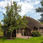 Thatched roof house