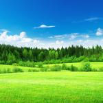 Blue sky and white clouds, grass, green landscape wallpaper