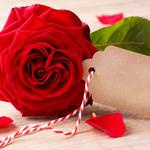 Red, heart, valentine`s day, red roses, roses