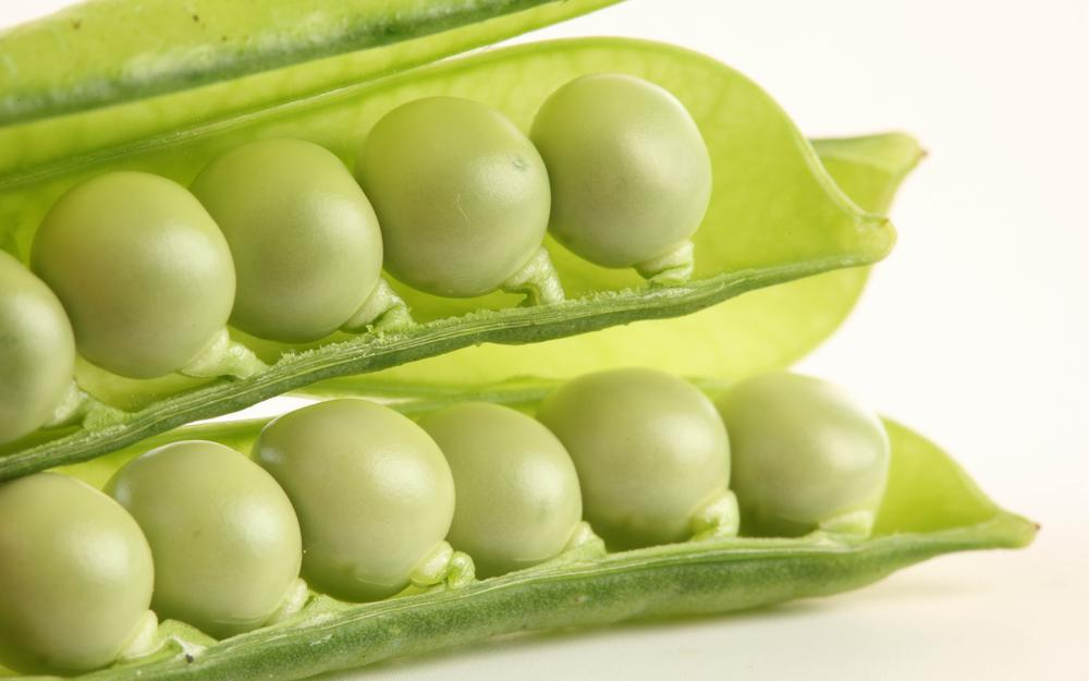 White background, peas, cut