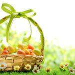Easter, spring, spring, colorful, flowers, daisy, eggs