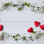 Valentine's day, flowers, hearts