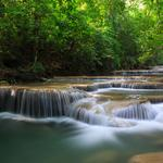 Forest, trees, waterfall, river, green nature wallpaper