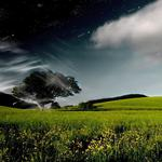 Tree, night, sky, whirlwind, day, clouds hd wallpaper