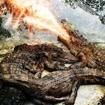 Water, abstract, crocodyles, fire, predators, mouth