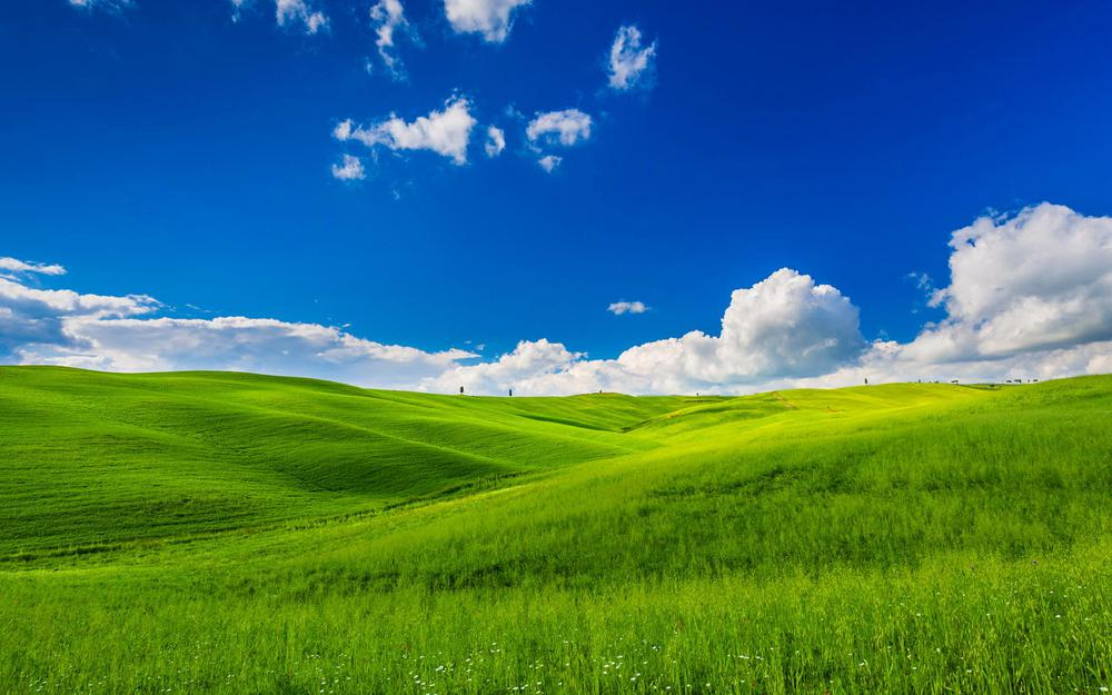 Eye protection, green, endless, sunny, blue sky and white clouds, grassland, scenery desktop wallpaper
