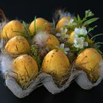 Eggs, ornaments, easter, easter eggs, feathers
