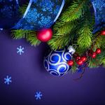 Branch new year toy christmas hd wallpaper
