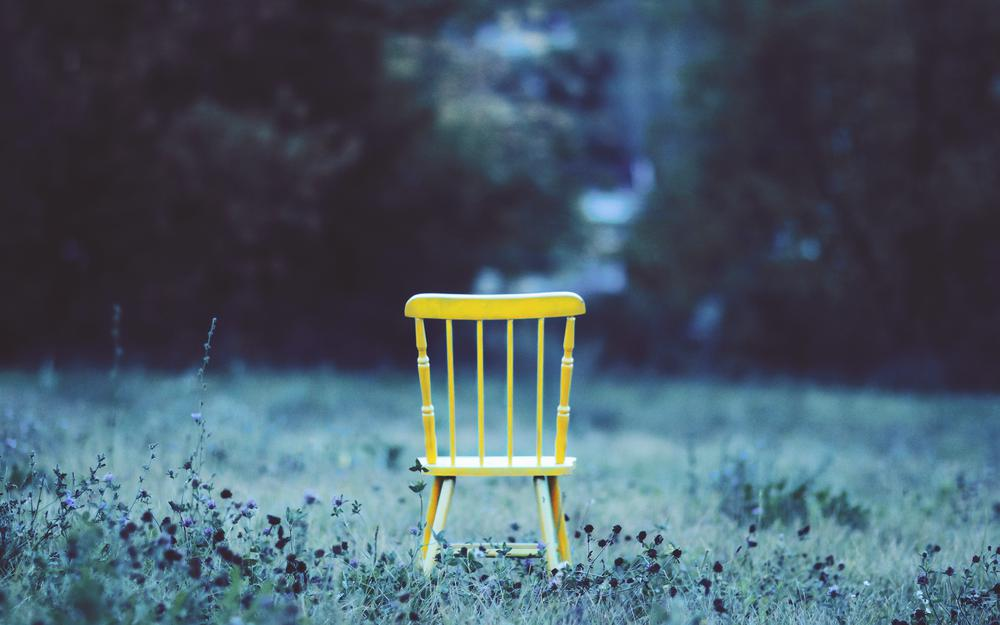Field, flowers, grass, chair