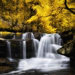 Autumn forest yellow leaves, waterfall water, natural beauty desktop wallpaper