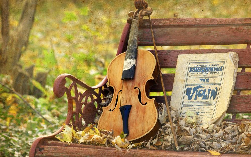 Bench, music, violin, texture