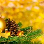 Ball toy christmas tree branch wallpaper