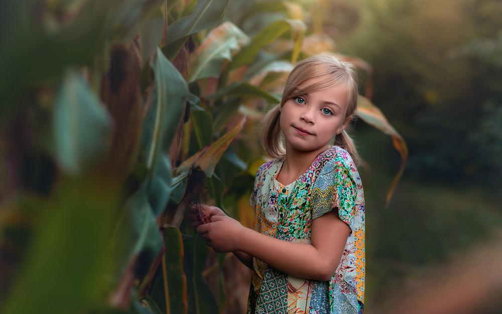 Beauty, bokeh, lorna oxenham, in the corn, girl