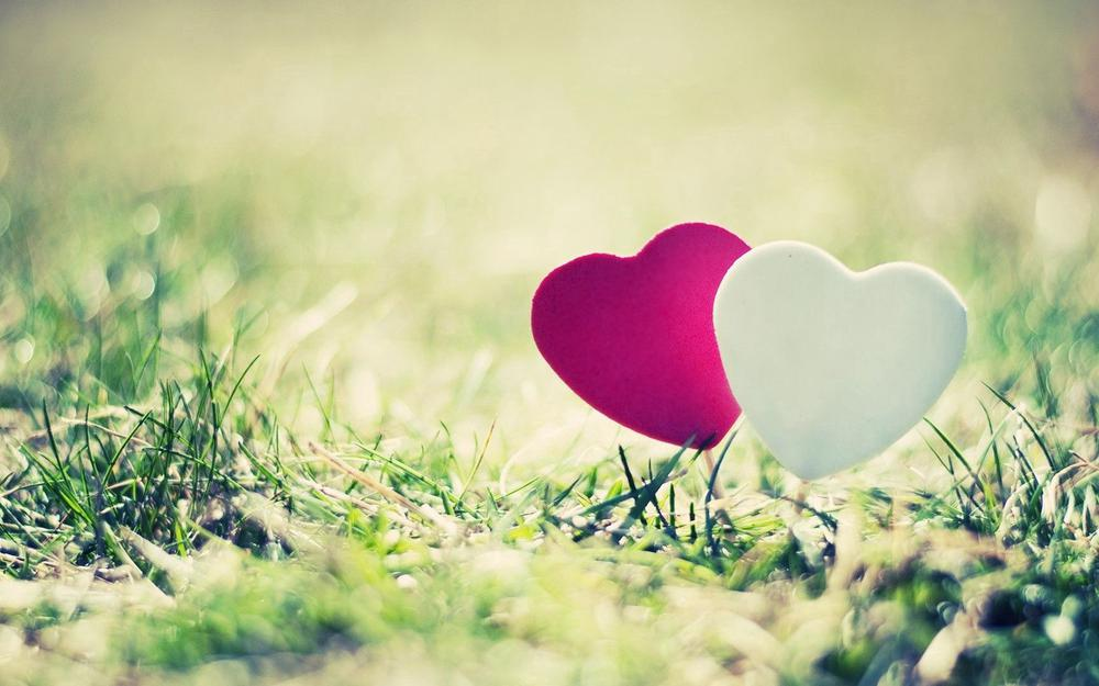 Heart, grass, couple wallpaper