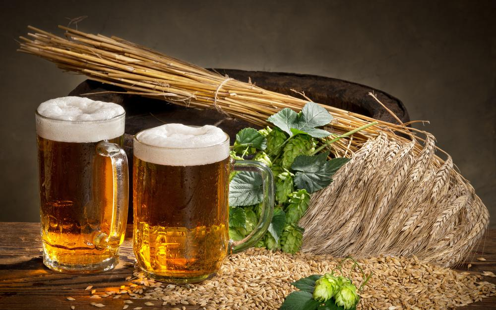 Hops, ears, foam, beer, millet, spikes, glass, foam, beer, glass, hops, wheat