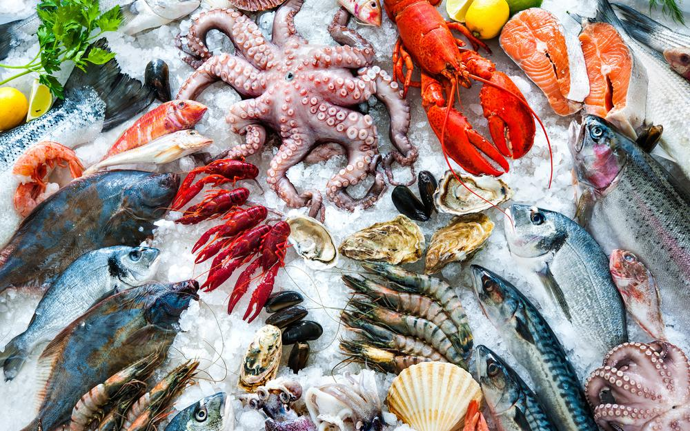 Different types of seafood, white meats, ice