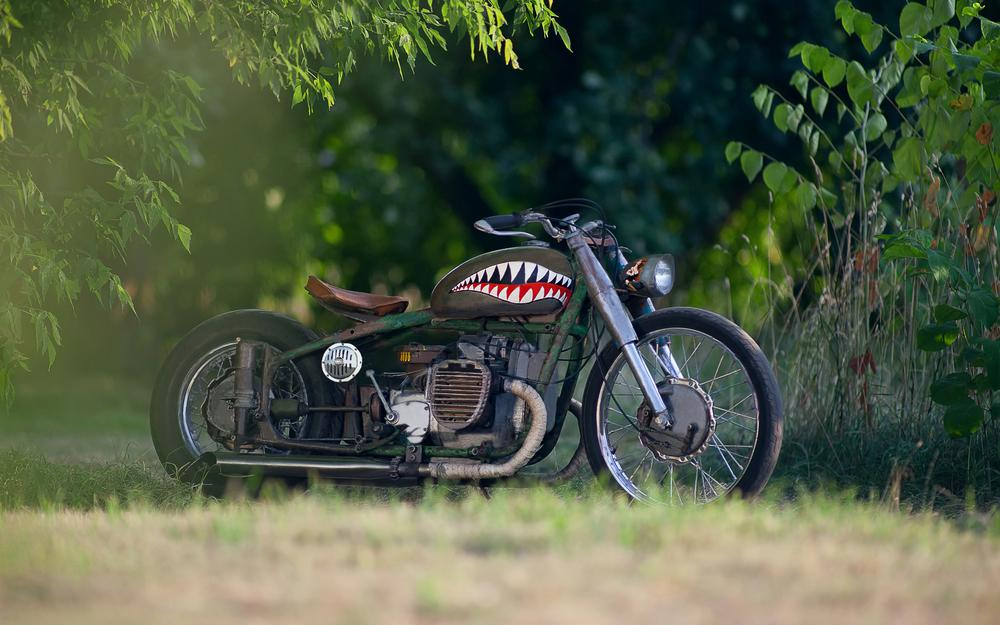 Motorcycle grass forest