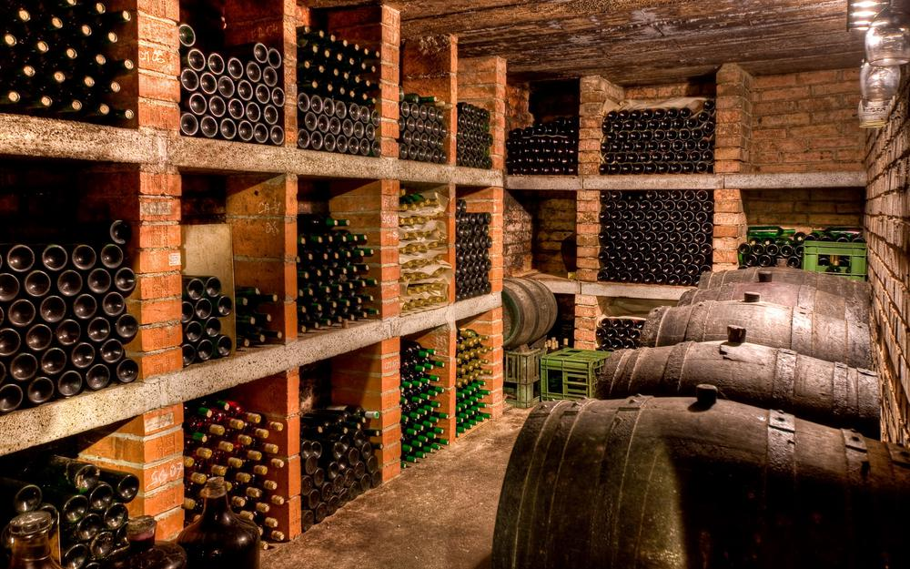 Cellar with wine
