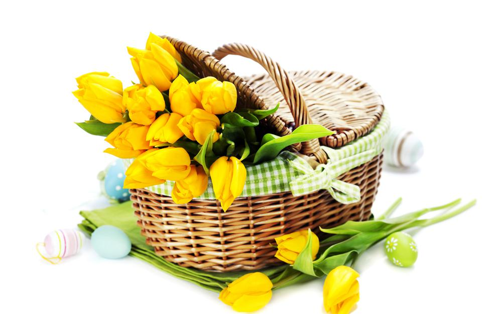 Yellow, flowers, eggs, basket
