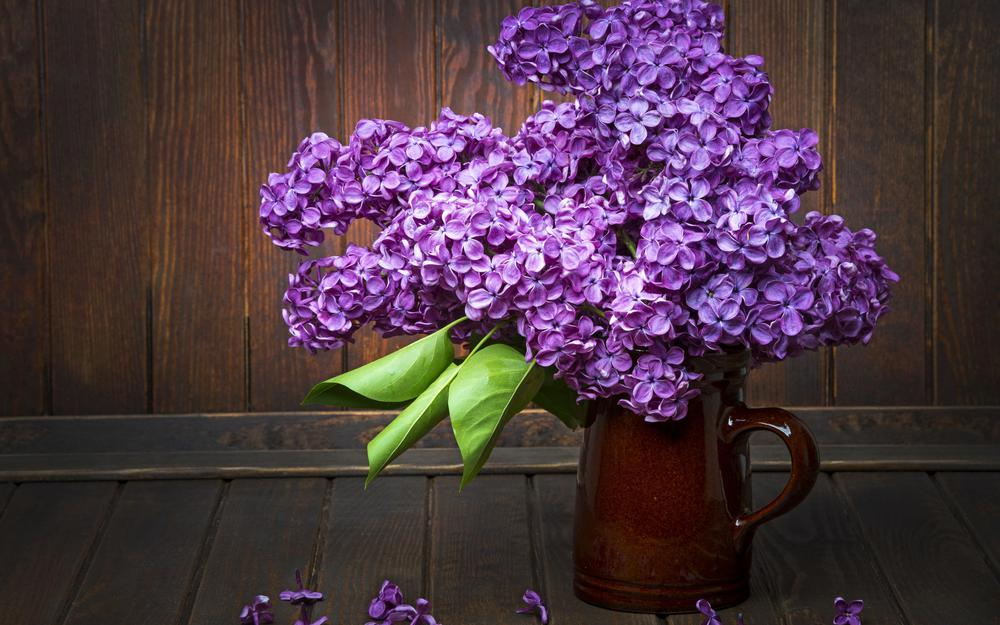 Lilac in a vase wallpaper